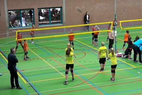 Voveda Volleybal vereniging